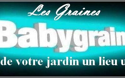 LesgrainesdeBabygraines1542867344